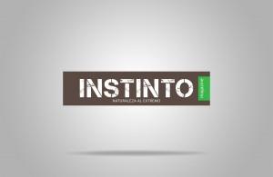 """Logo """"INSTINTO"""""""